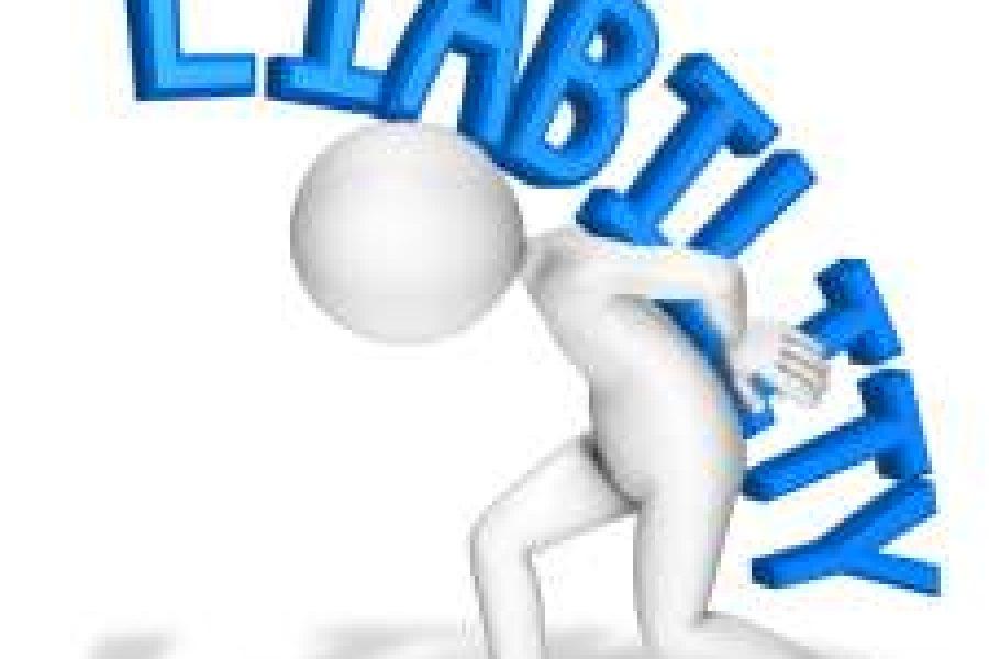 Активиран е-сервисот за пријавување на обврските во јавниот сектор