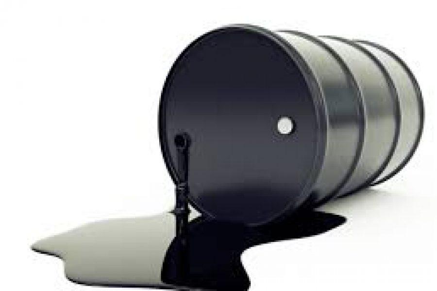 Цени на горива, Надоместок за користење на приватно возило, Структура на цените на горивата и Патен налог